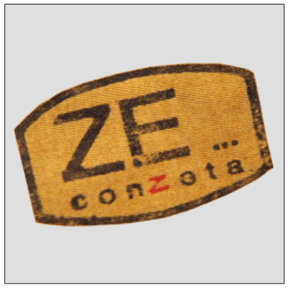 ZECONZETA LOGO_compressed